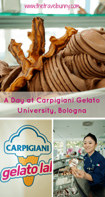 gelato-university-bologna