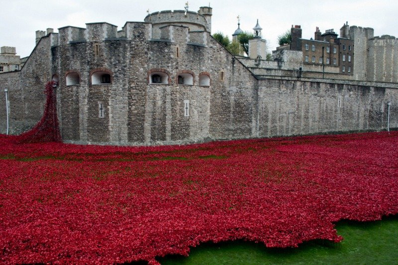 The Tower of London Poppies and a tribute