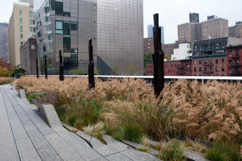 Chelsea Grasslands on the High Line