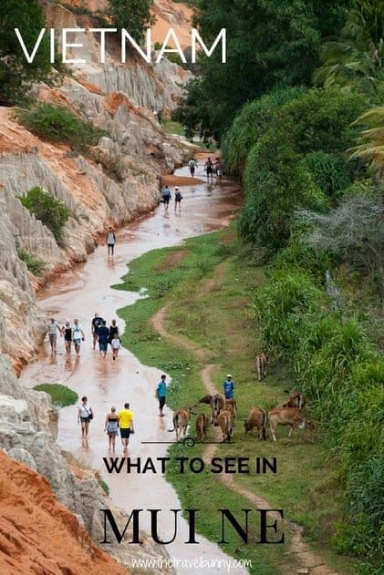 What to see and do in Mui Ne, Vietnam - tips and guides to help you get the most from your trip