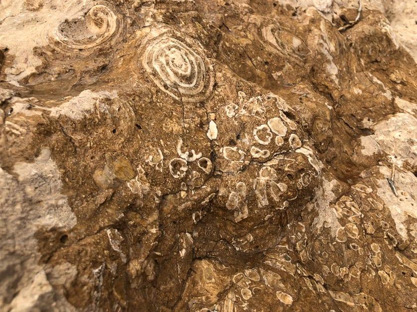 Fossil Rock, Sharjah