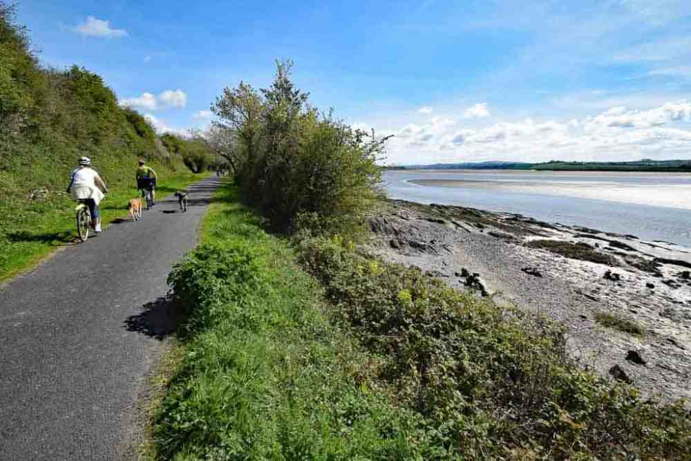 Tarka Cyclists and dogs on the Tarka Trail Devon with estuary to the right