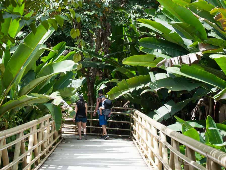 Things to do in Manuel Antonio, Costa Rica