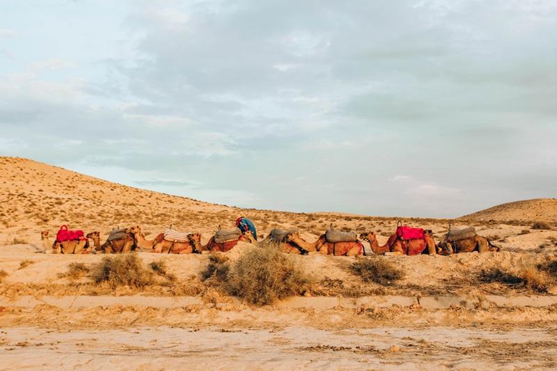visitar deserto marrakesh