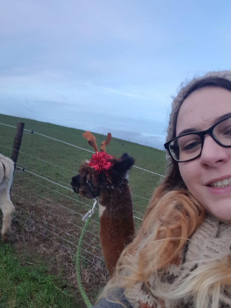 A selfie of a girl with an alpaca wearing reindeer antlers at Charnwood Forest Alpacas