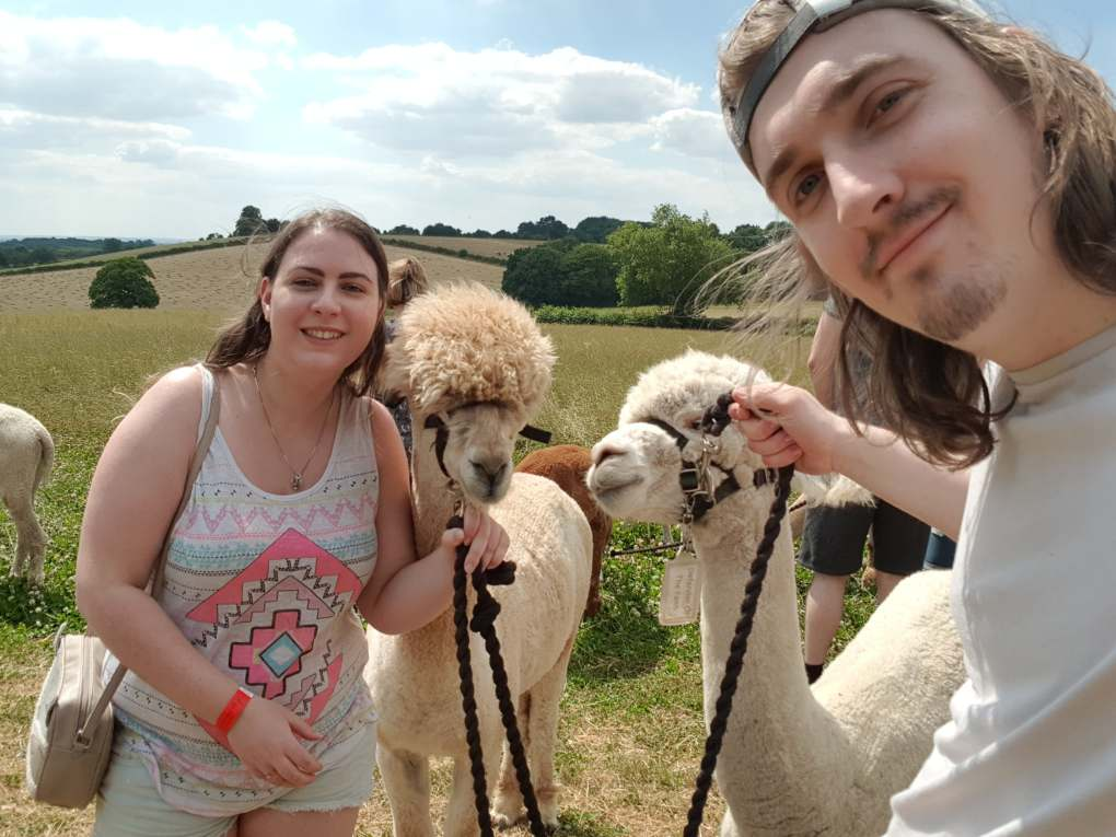 A girl and guy holding two alpacas by ropes under their chins to take a selfie with them
