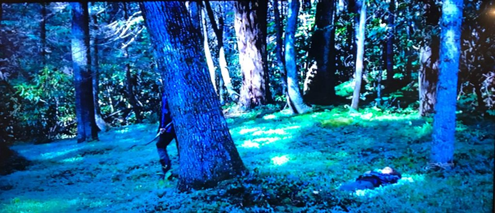 A scene from the Hunger Games where Katniss peers out from behind a tree in a green forest