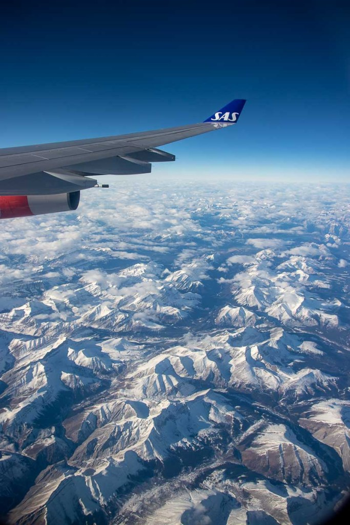SAS A340 Economy Class-5