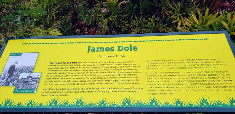Dole Plantation