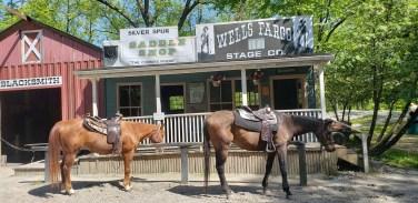 Wild West, horses