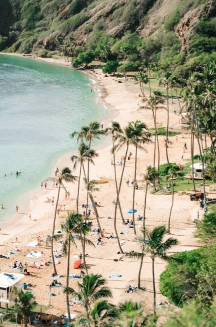 Fun Things to Do in Oahu