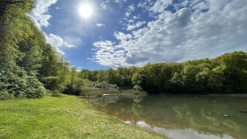 Ledgewood Park