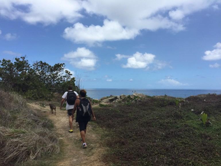 Hiking the Back Bay trail