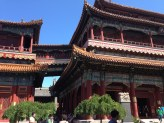 Just few buildings of the many that made up the Buddhist temple complex we visited in Beijing.