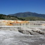Mammoth Hot Springs: Yellowstone National Park