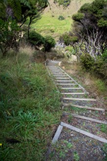 2016 04 02 Sail Day 4 Urupukapuka Hike to Te Hoanga Pt-134