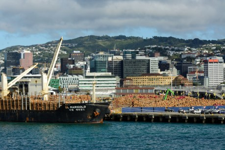 206 05 06 Ferry to Wellington (176)
