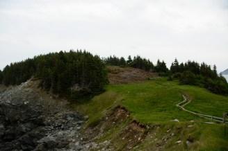 drying-path