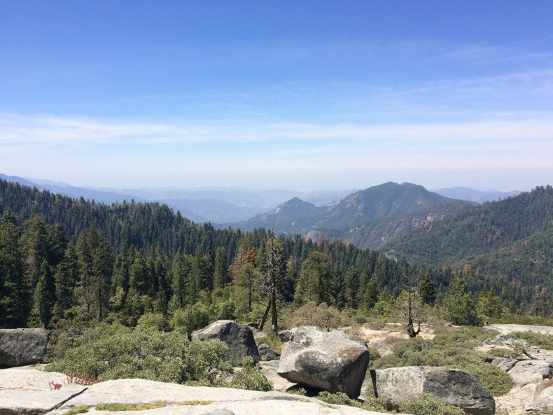 Exploring Sequoia National Park - The Traveling Storygirl