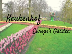 Keukenhof - Europe's Garden