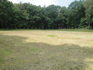 This field is the same field where the bodies were burned in the picture above - Auschwitz, Poland