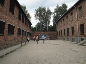 This is where a majority of the executions by firing squad occurred - Auschwitz, Poland