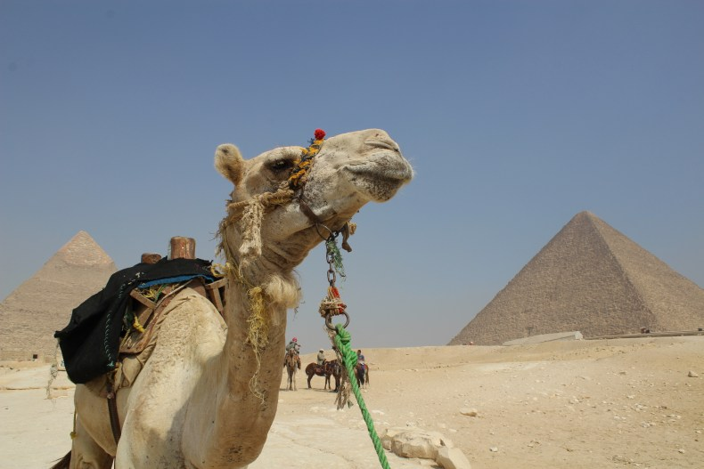 The Dos and Don'ts of Egypt - The Traveling Storygirl