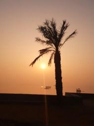 Sunrise @ Anasagar jheel, Ajmer
