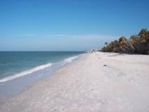 Barefoot Beach Naples Florida