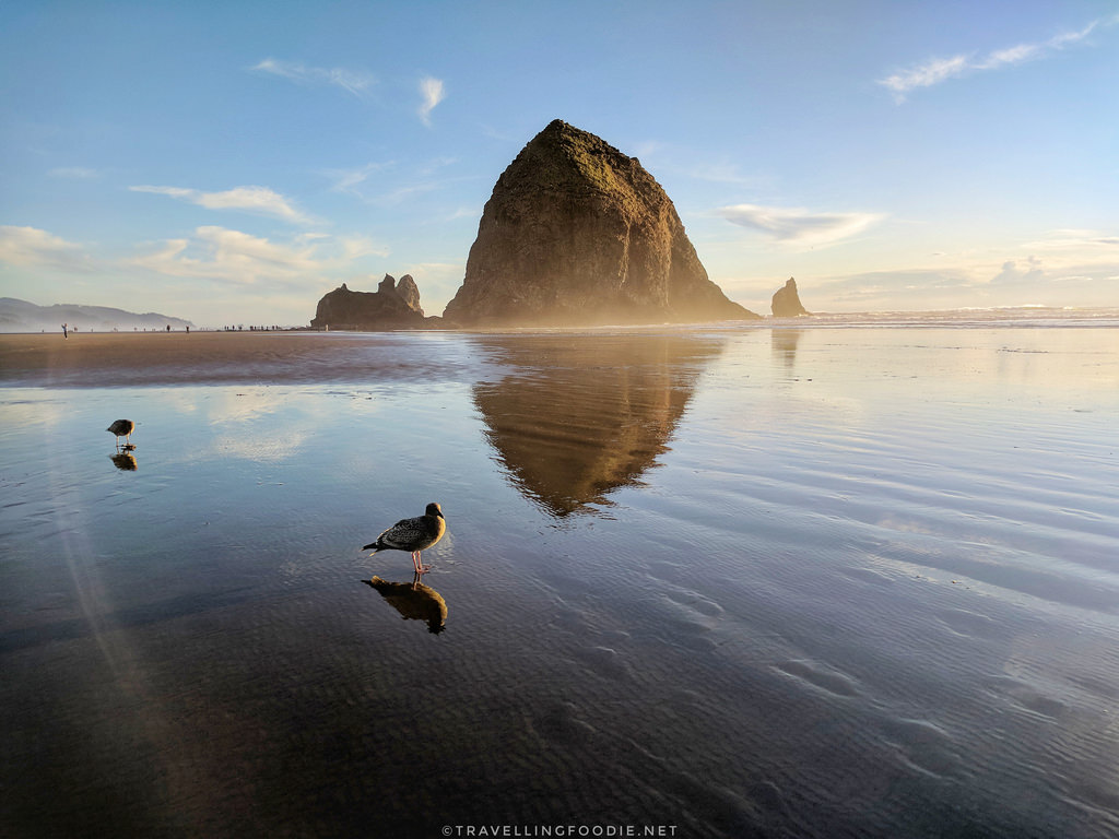 Multonomah Falls Wallpaper Cannon Beach Amp Haystack Rock 10 Beautiful Photos That
