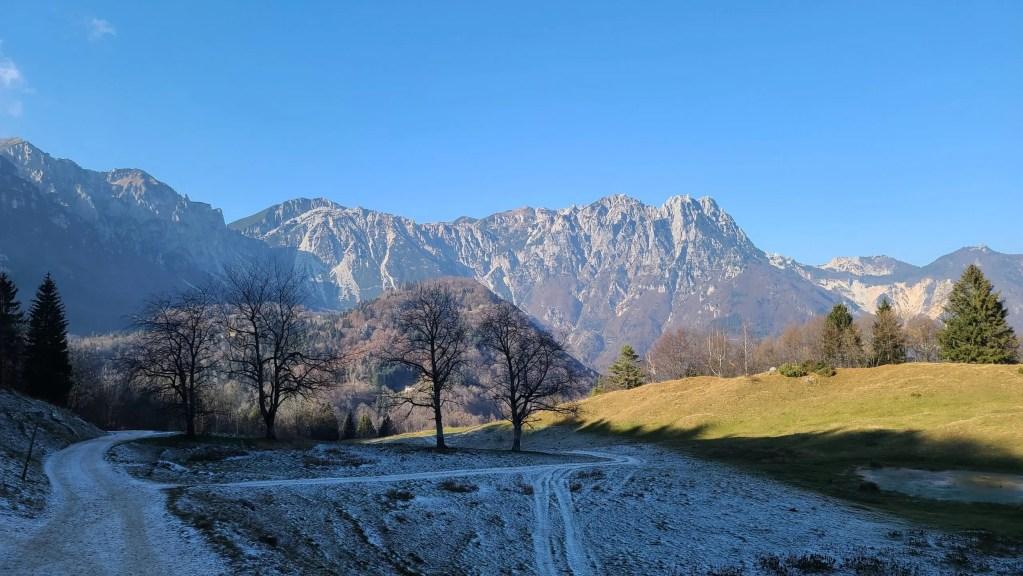 Sentiero Dei Grandi Alberi, Path of the Big Trees, Vicenza, Italy