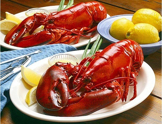 Lobsters from Maine