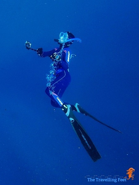 freediving gear