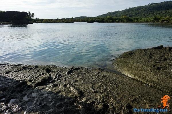 natural pool at bel-at