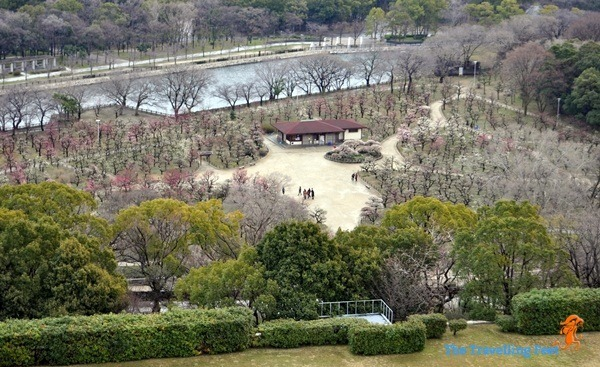 Plum Grove Garden in Osaka, Japan