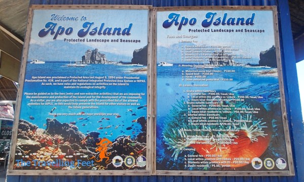 apo island rules and regulations