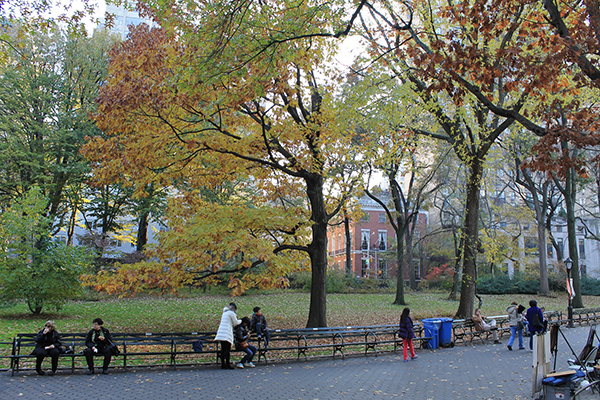 Why You Should Consider Exploring Central Park by Foot or By Pedicab