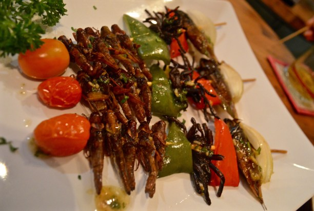 Insect skewers at the Bugs Cafe, Siem Reap, Cambodia