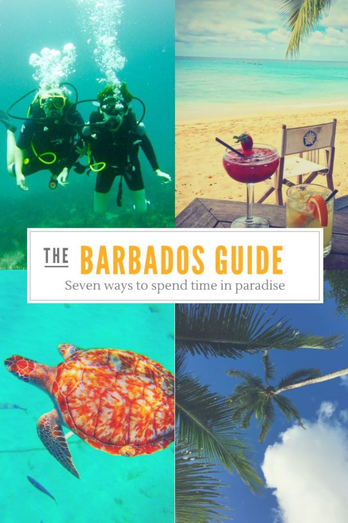 7 ALTERNATIVE WAYS TO SPEND TIME IN BARBADOS
