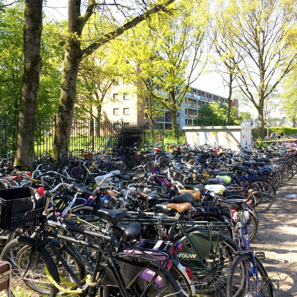 Sooo many bikes outside Park Transwijk | Bevrijdingsfestival | Utrecht | The Travel Medley