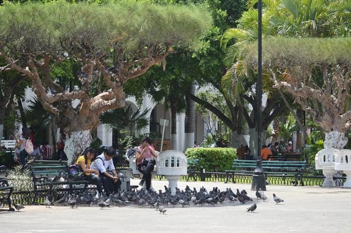 Main town square in Merida, Yucatan, Mexico