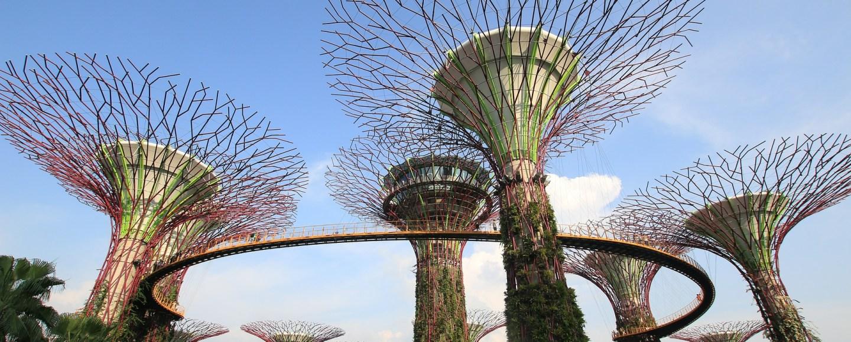Singapore, Dom Nemer
