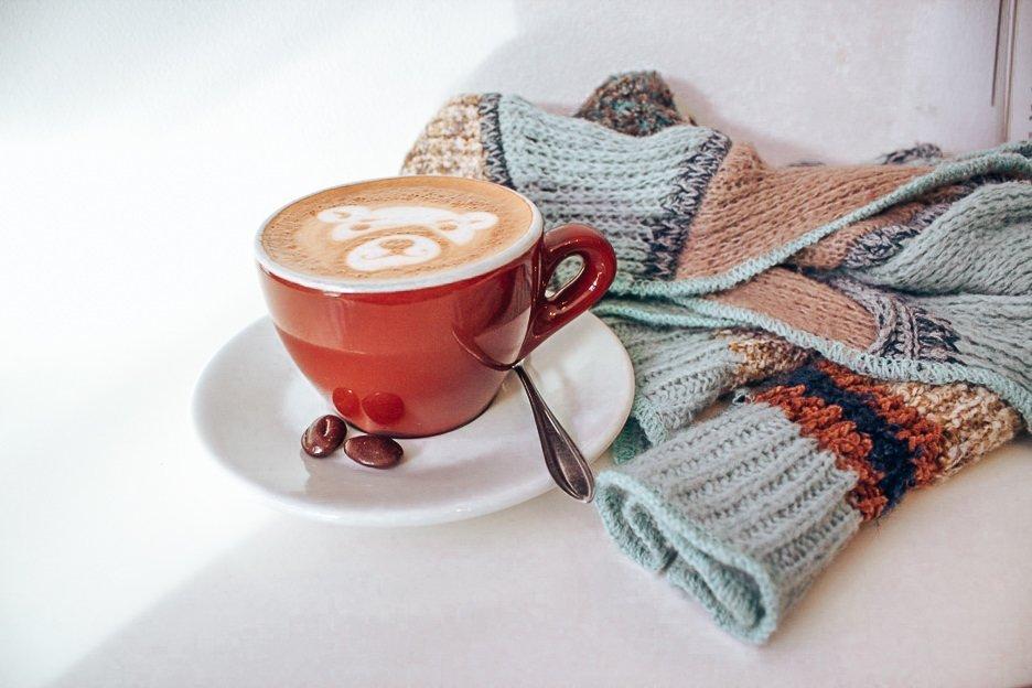Coffee art bear in a latte at Trakteren, Amsterdam