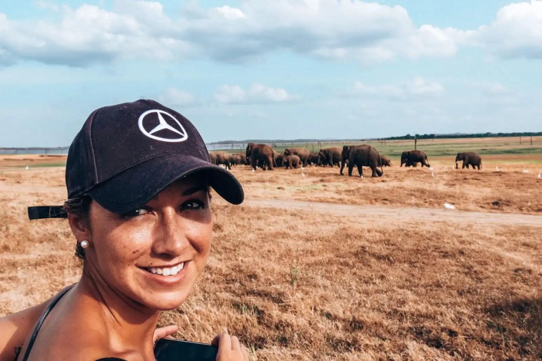 On safari with Elephants near Minneriya