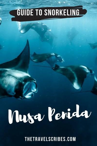 Snorkeling Nusa Penida - Pinterest