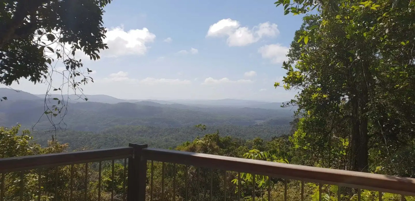 Cairns itinerary - Daintree Forest Outlook