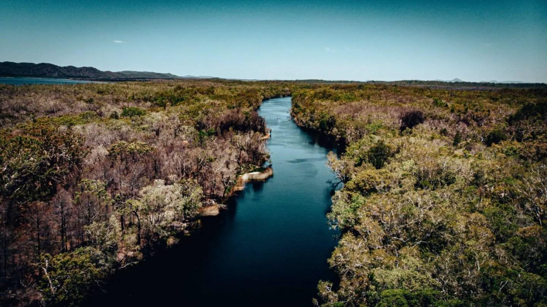 Noosa Everglades Tour - Noosa River drone