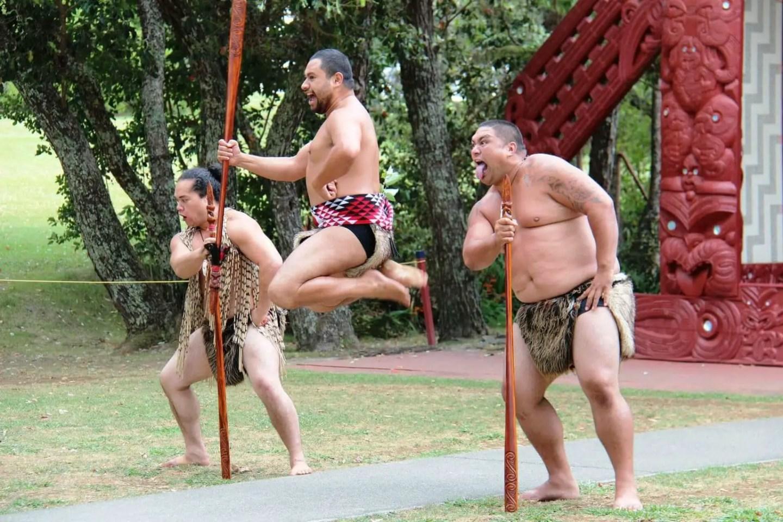 Waitangti Treaty Grounds - Things to do in Paihia
