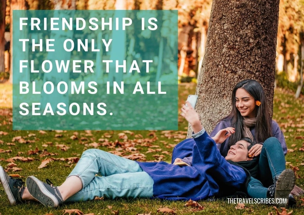 Caption for friends - Friendship is the only flower that blooms in all seasons
