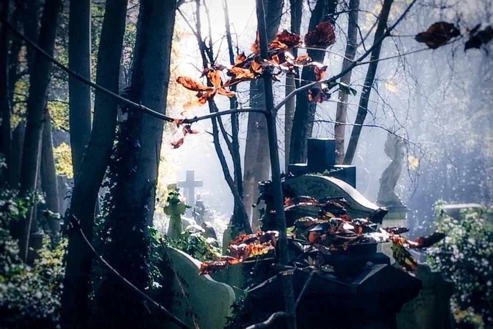 Non touristy things to do in London - Highgate Cemetery